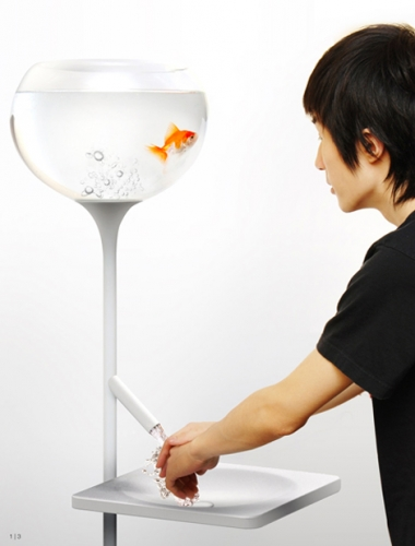 We Made This: poor little fish