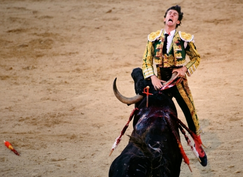 Spanish matador Israel Lancho gored by a ranch bull