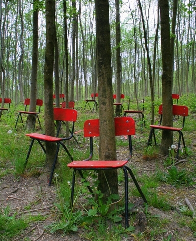 chairs and trees