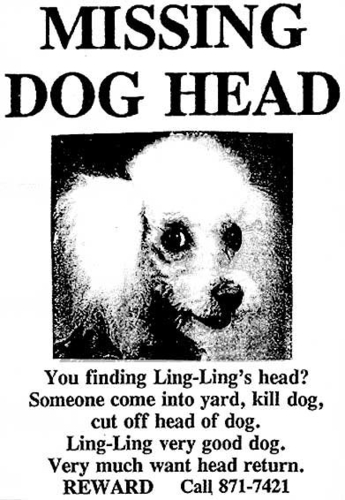 Newtown Missing Dog Ad from early 90's