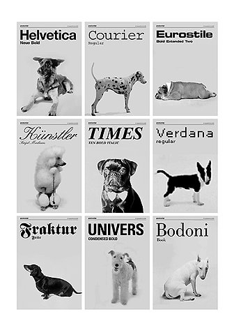 Dogs & Typography