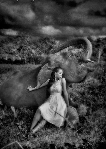 Time Of Fun | Girl And Elephant