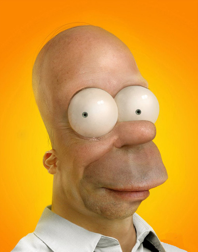 Real Homer /cartoon illusions