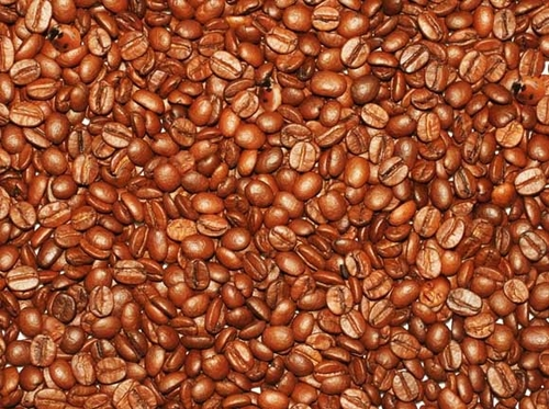 Hidden Coffee Faces and Bugs | Mighty Optical Illusions