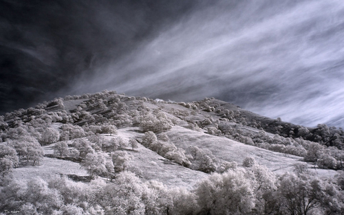 IR scapes No.4725 by DigiPainteR