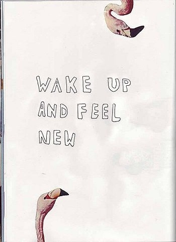 wake up and feel new