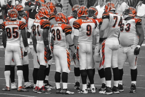 the Bengals 2010 offense