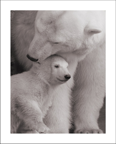Tenderness by Lilia73