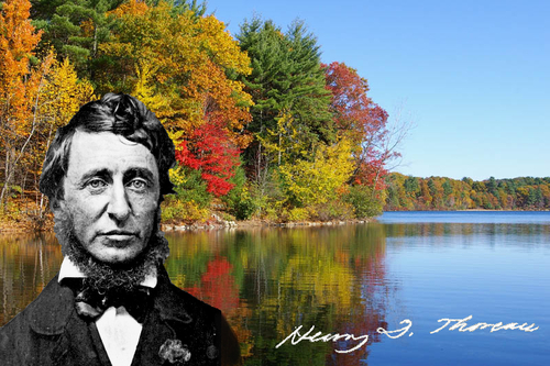 Walden and Thoreau by fbouvier