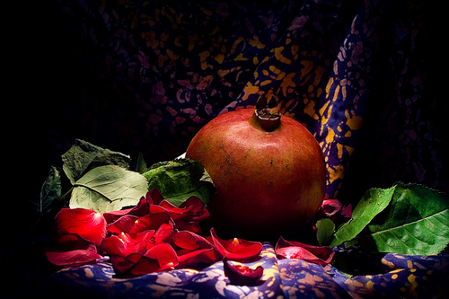 Pomegranate in the Rose Leafs