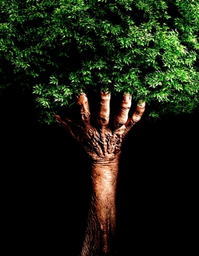 Humanity And Nature photographed by Humberto Utrabo Junior - Picture Of The Week - ONE EYELAND
