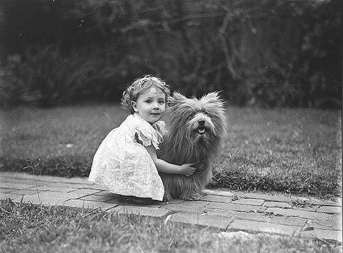 Study of a small girl with a prize Scottish terrier dog,c.1935 by Sam Hood