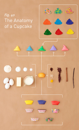 Anatomy of a cupcake in Material and objects related with the cupcakes and muffins, #cuisine, #cupca