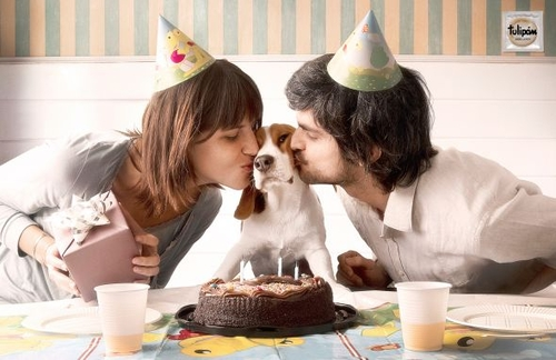 Tulipan Condoms: Puppies, Birthday