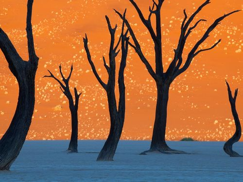 This is not a painting: Namib-Naukluft Park Picture