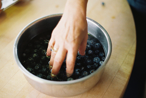 Blueberries | Goodmorning & Goodnight