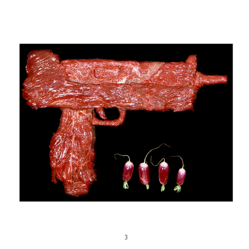 Meat Guns by Dimitri Tsykalov