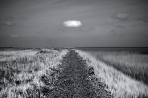 Photographie de Chris Friel