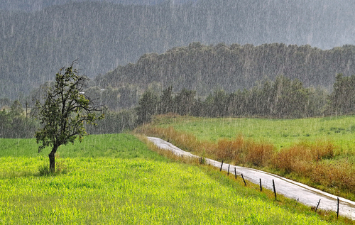 Landscape in the rain ! - National Geographic Photo Contest 2011