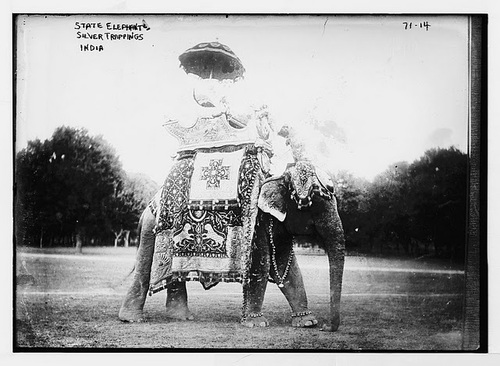 State elephant adorned with silver trappings - Old Indian Photos