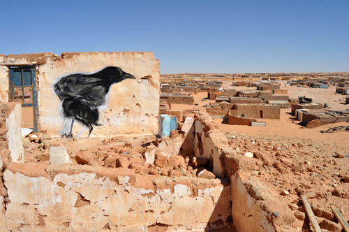 At Artifariti 2011, Dajla, Western Sahara