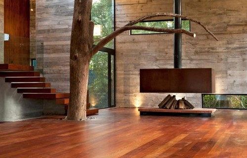 "#architecture ""Tree Corallo House"""