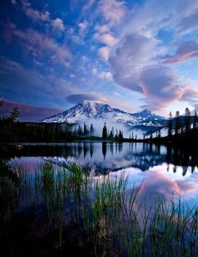 Amazingly Beautiful Capture of Rainier National Park, Washington.