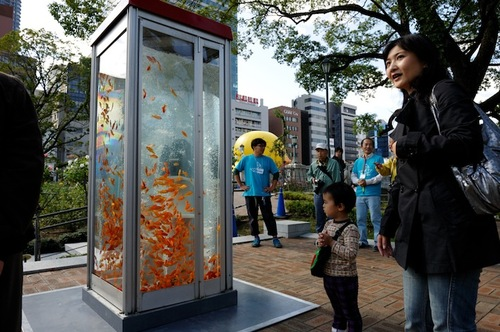Phone Booths Shockingly Morped into Goldfish Aquariums