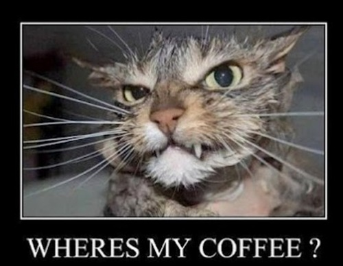 Wheres is my coffee?