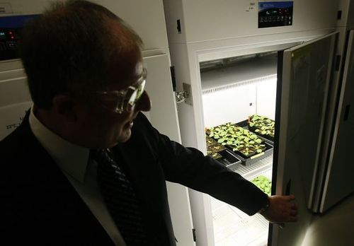Biofuel created by explosive technology
