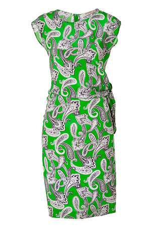 Apple Green-Multi Printed Silk Dress by ETRO