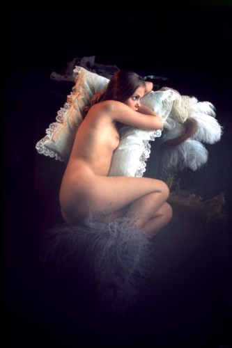 The Erotic Photography of Claude François
