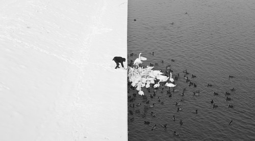 Nature - National Geographic Photo Contest 2013 - National Geographic