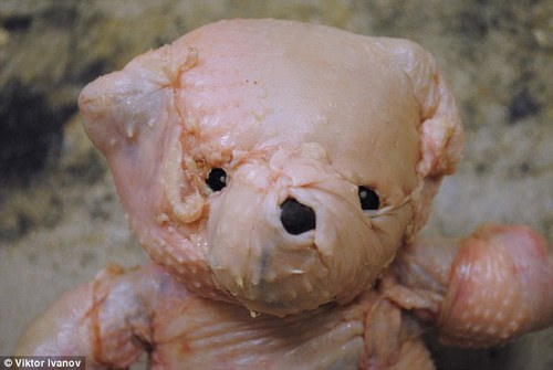 Russian artist stitches teddy bear out of clumps of meat and chicken skin | Mail Online