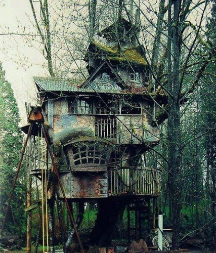 600x702xRamshackle-TreeHouse.jpg.pagespeed.ic.x856X4vMuQ.jpg 600 × 702 pixels