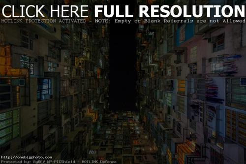 the grid of living in hong kong photo