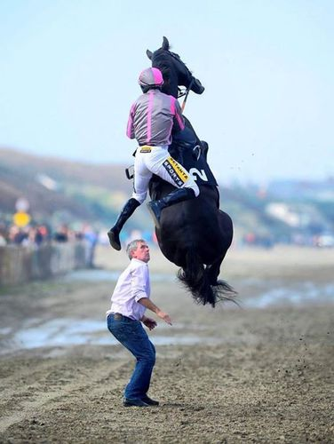 A horse gets very spooked and gets airborne at Laytown Races.