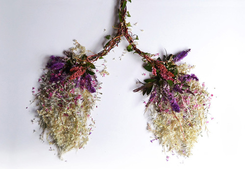 Human Organs Made from Flowers and Plants by Camila Carlow
