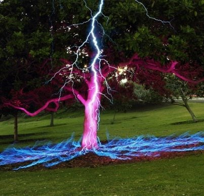 Long Exposure Picture of a Lightning Bolt Hitting a Tree