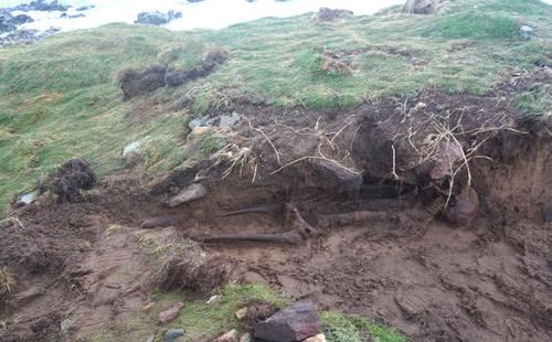 Tropical Storm Ophelia Unearthed Ancient Human Skeleton In Ireland