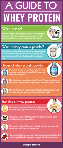 Is Whey Gluten Free? [WHEY PROTEIN INFOGRAPHIC]